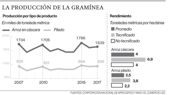 La producción de la gramínea