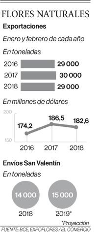 Volumen de envío de flores crecerá 7% en este año por San Valentín