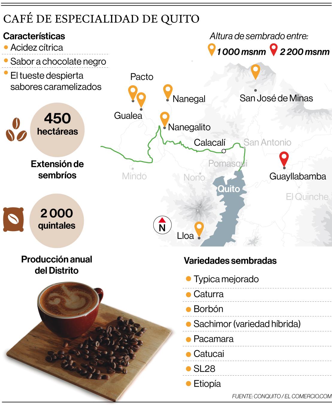 La ruta del café de especialidad apúnta a ser referente artistico