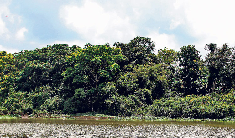 Humedal Abras de Mantequilla
