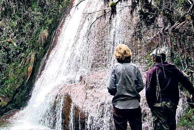 Senderos y cascadas