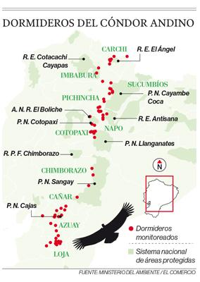 Dormideros del cóndor andino