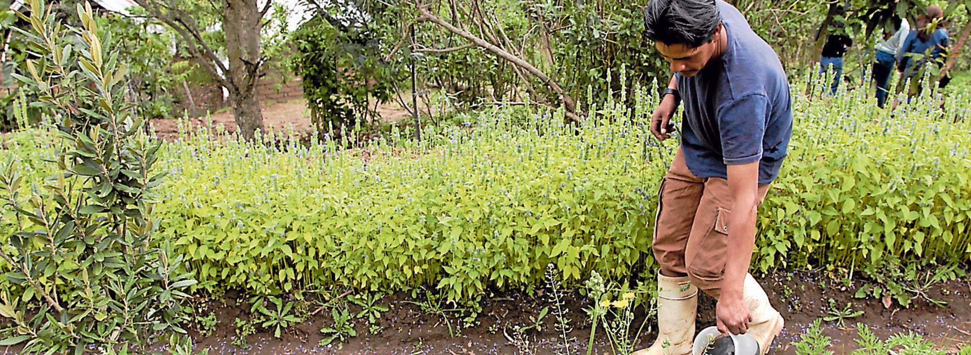 Agroecología, un modelo familiar y solidario