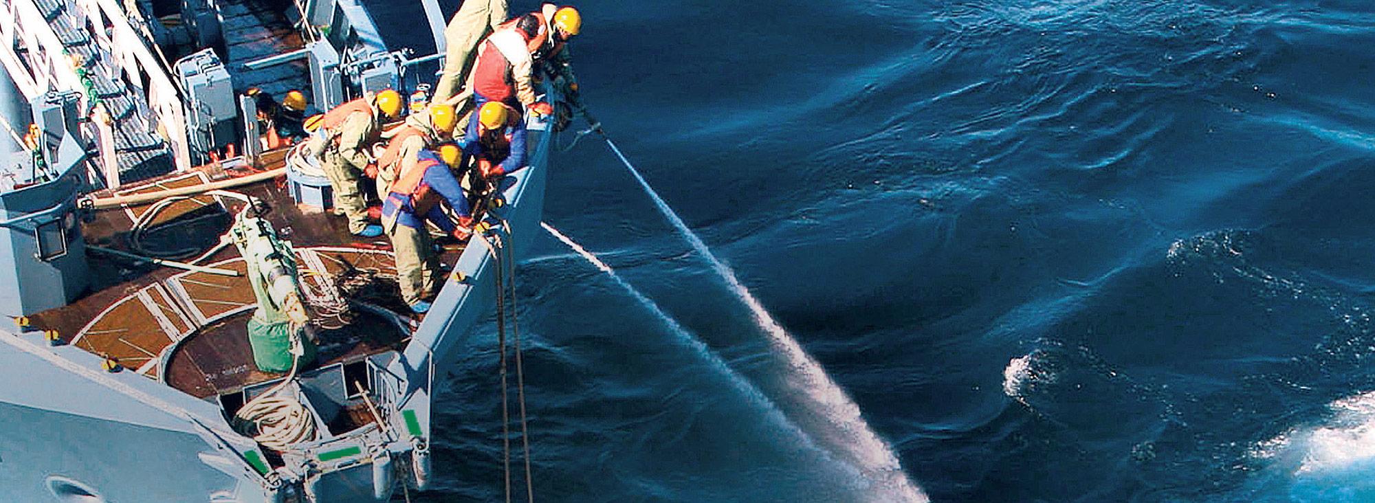 Conservación ballenas