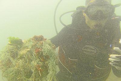 Buzos recolectan basura del mar