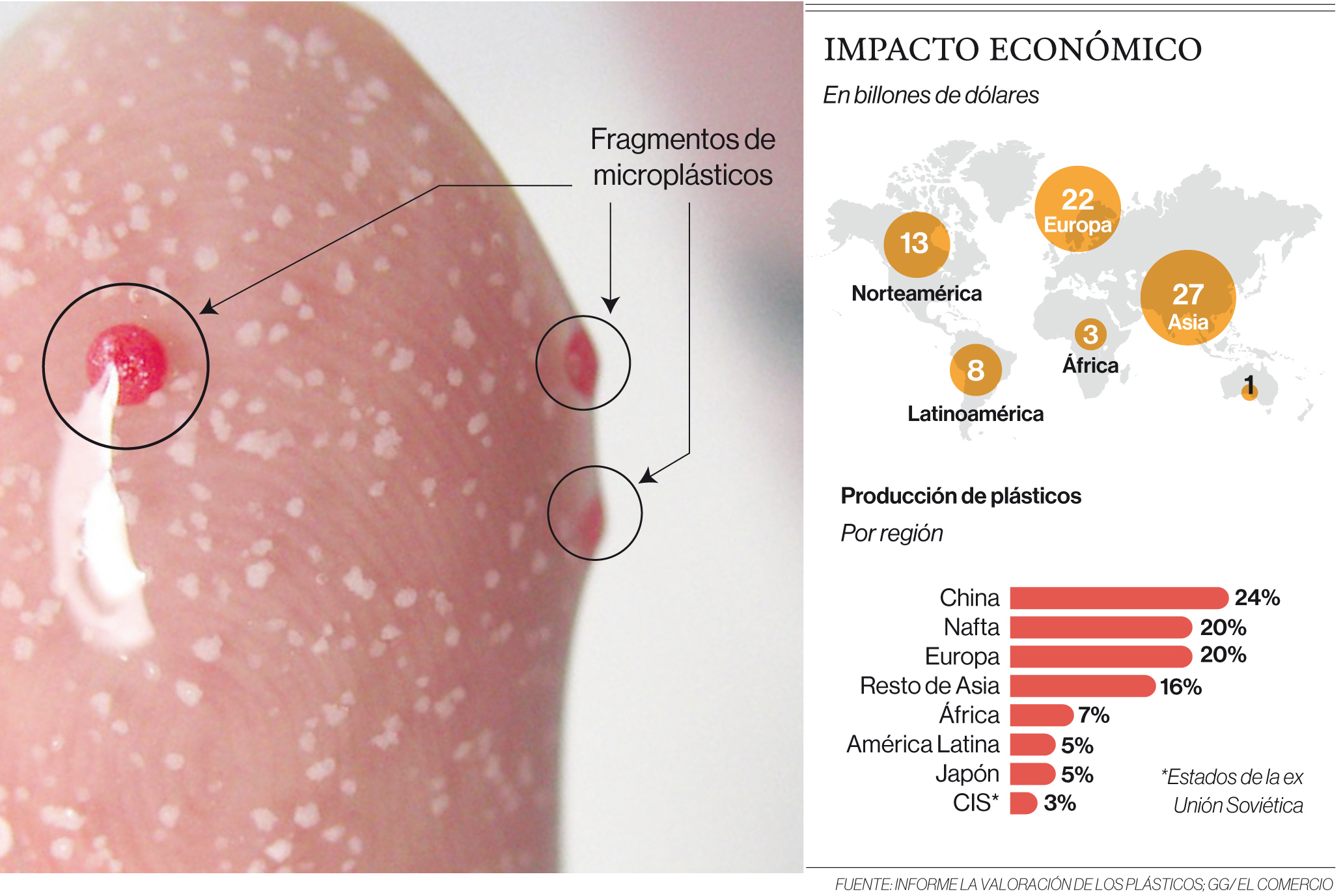 Microplásticos:Huéspedes no deseados