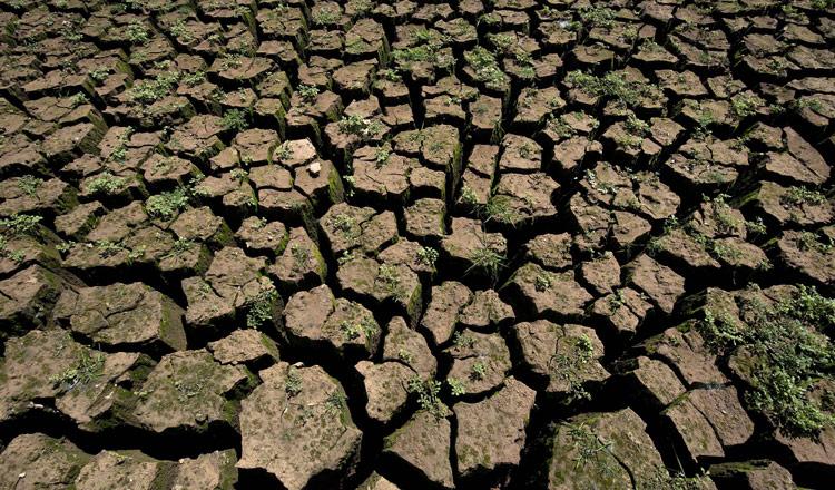 Escasez de lluvias