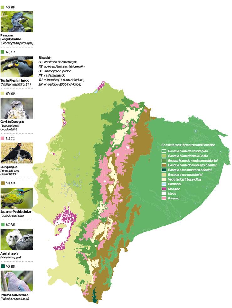 Ecosistemas terrestres del Ecuador