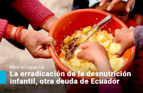 La erradicación de la desnutrición infantil, otra deuda de Ecuador